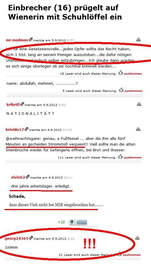 Meinungen in österreichischen Zeitungen