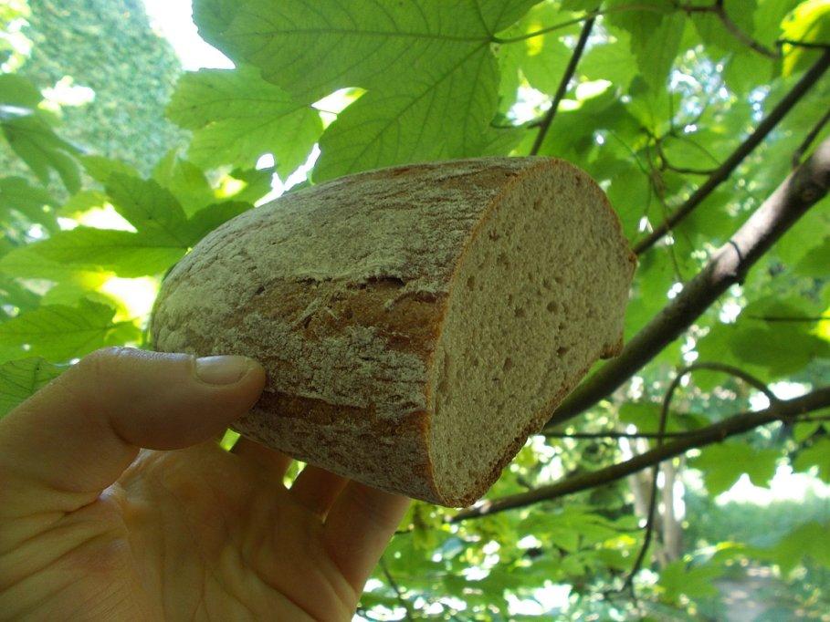 Die Zeit der Meisterqualität ist vorbei Heute backt eine angelernte Hilfskraft Brot