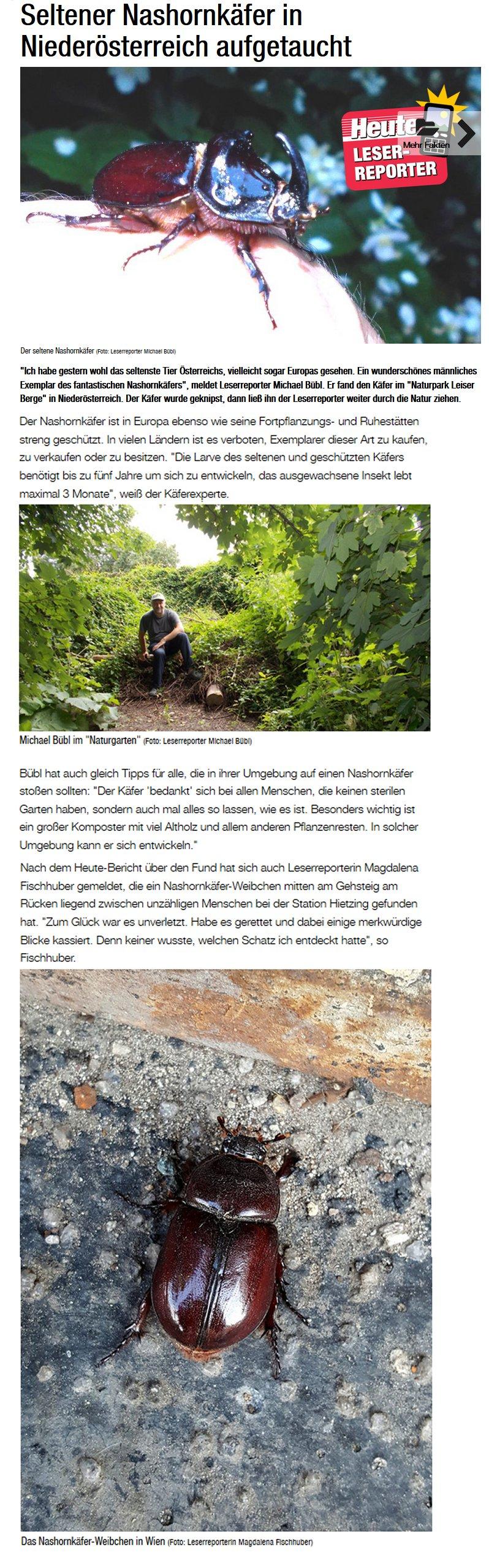 """Toller Bericht in der """"heute""""  Nur in einem Naturgarten findet der Käfer Lebensraum"""