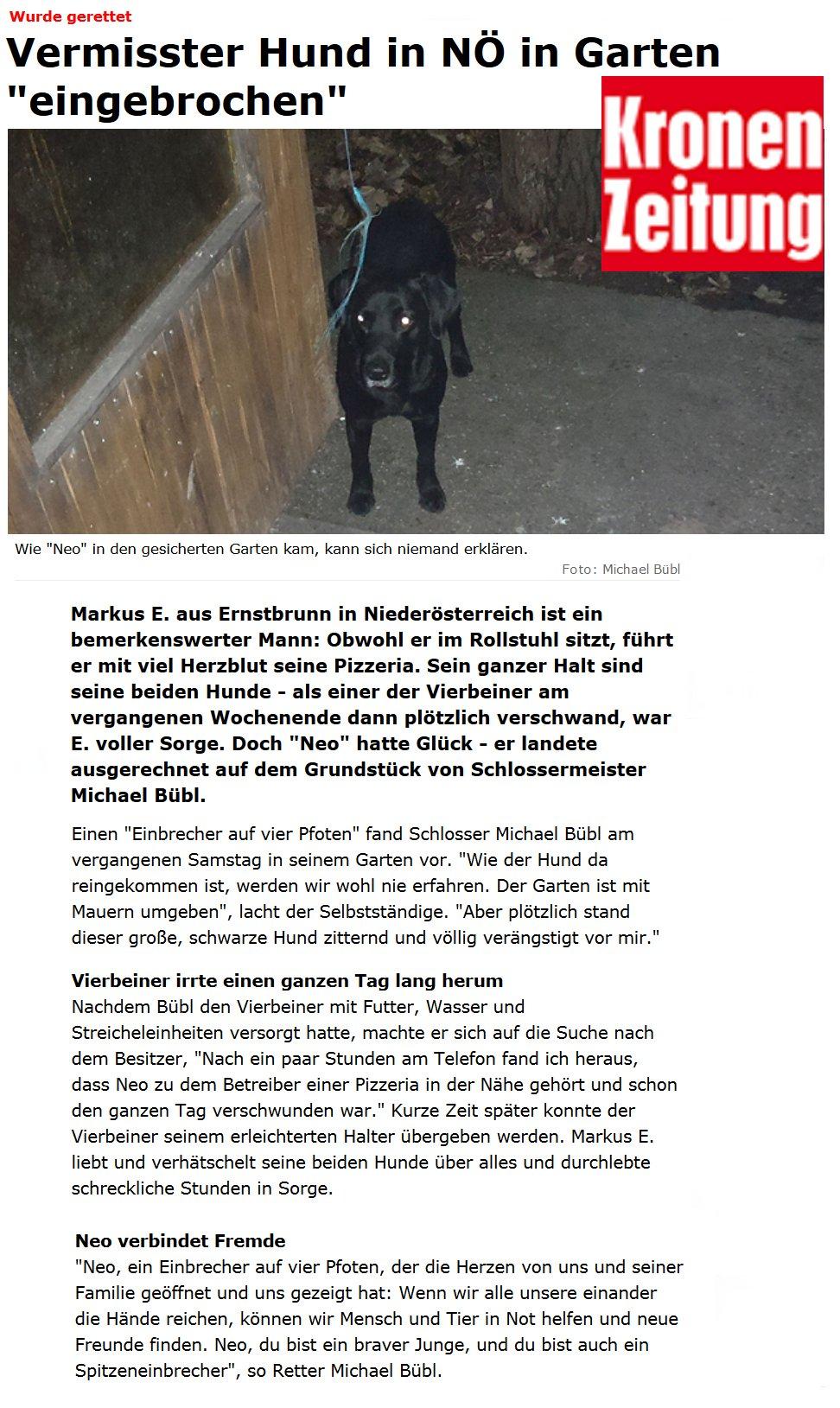 """Einbrecher Hund Neo gelangte in die Schlagzeilen der """"Krone"""" Wie der """"Einbrecher auf vier Pfoten"""" es geschafft hat über hohe Mauern zu gelagen, das bleibt sein Geheimnis"""