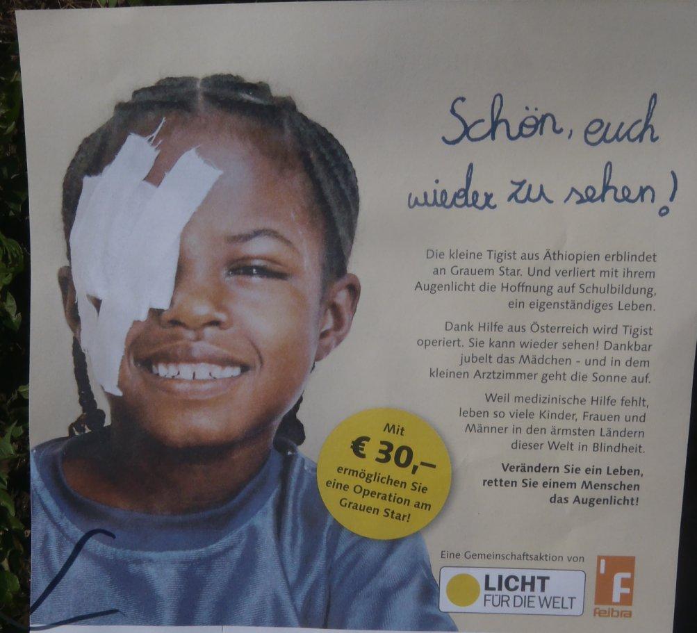 Mit dreissig Euro kann in Afrika eine Operation am Grauen Star durchgeführt werden - in einem europäischen Krankenhaus kostet dies mehr als das tausendfache