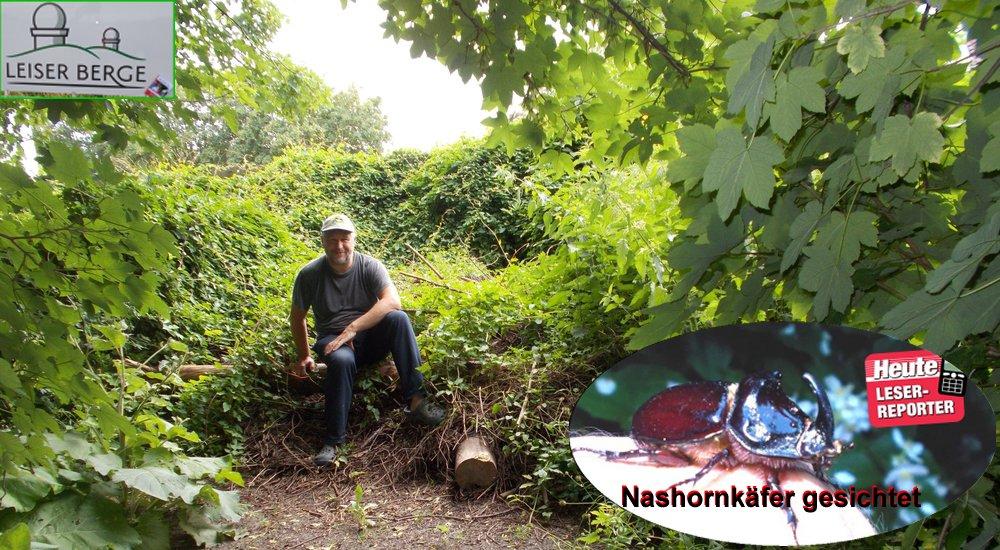 Schönes Bild: der Schlossermeister im Naturgarten