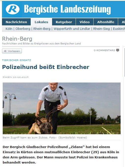 Polizeihund, Einbrecher